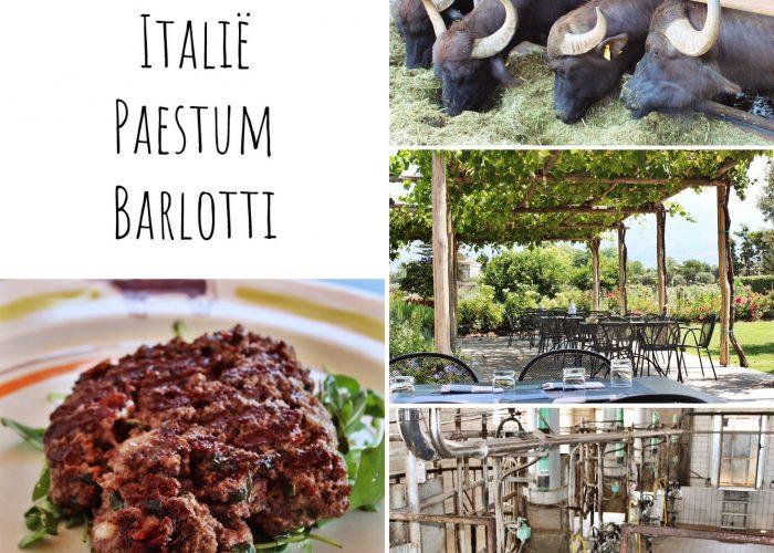 #hotspot | Italië - Paestum - Barlotti